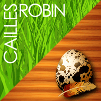 Cailles Robin